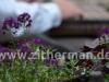 galerie-thomas-achatz-5